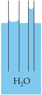 Kapillareffekt Darstellung